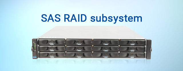 Introduced market's first SAS RAID subsystem