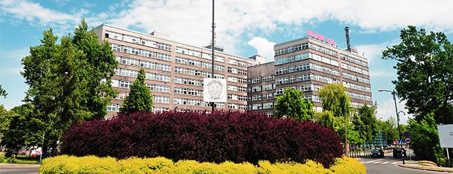 Silesian University